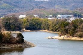 府中湖の写真