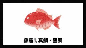 真鯛・黒鯛の画像