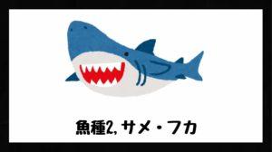 サメ・フカの画像