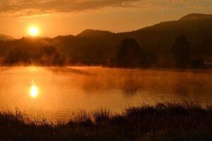野池の写真