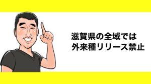 h2見出し3「滋賀県の全域では外来種リリース禁止」の装飾画像