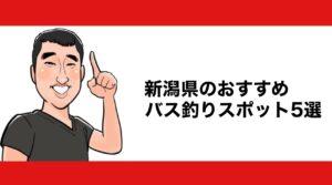 h2見出し1「新潟県のおすすめバス釣りスポット5選」の装飾画像